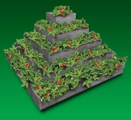 Pyramida na jahody 2 m x 2 x 1 m, barva šedá